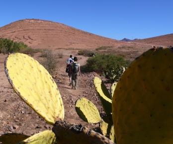 Trekking dans l'Anti-Atlas Occidental dans la région de JBEL SIROUA